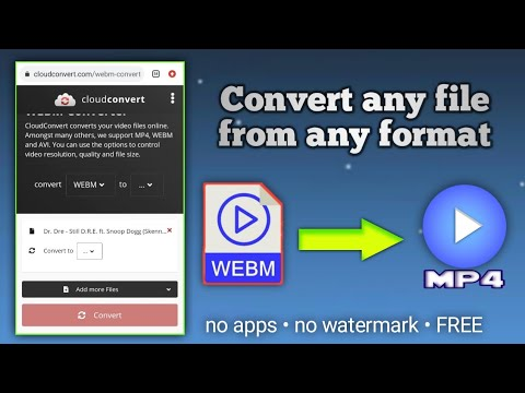 WEBM to MP4 converter website 😱 • Convert any file from any format to any format (no app installing)